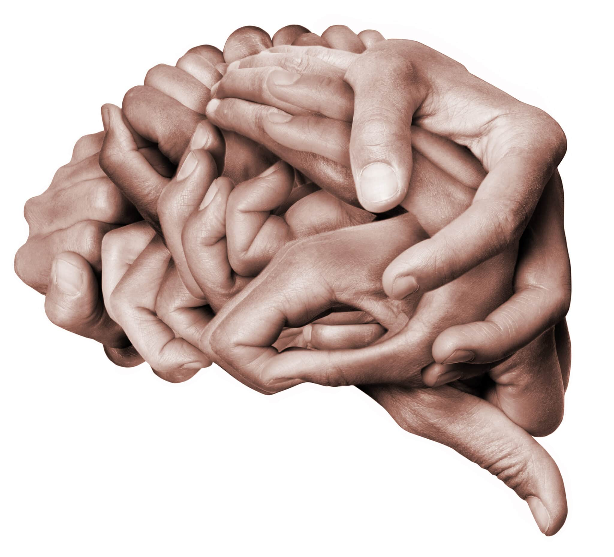 A,Human,Brain,Made,With,Hands,,Different,Hands,Are,Wrapped