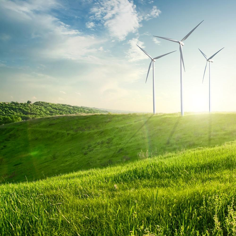 Wind generators turbines on sunset summer landscape