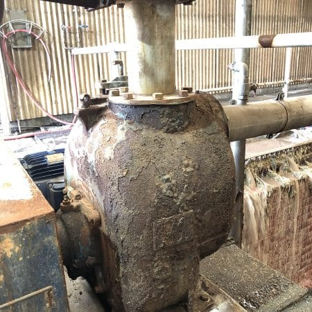 gr-waste-abattoir-herd-pumps-like-swarznegger-lr--450x450
